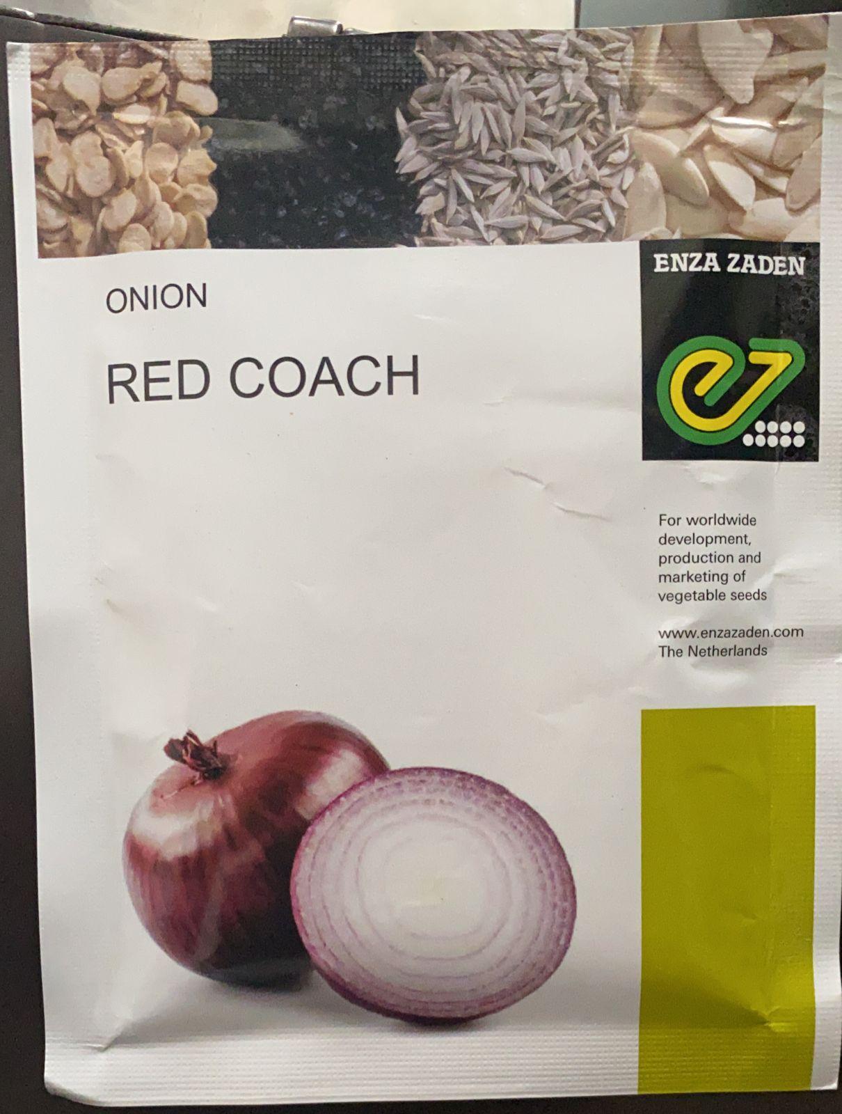 Onion Red Coach - 50gm