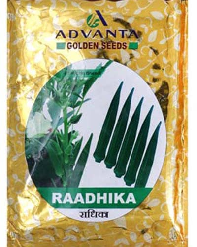 Radhika - 250 gm