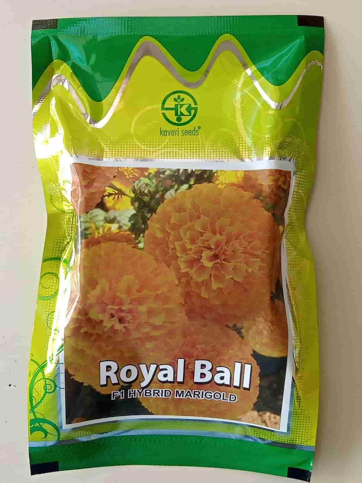 Royal Ball - 100 Sds