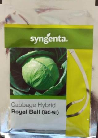 Royal Ball(BC 51)- 2000 Sds