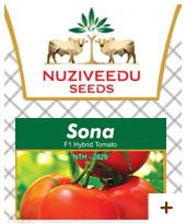 Sona Tomato