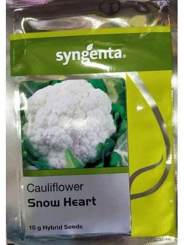 Snow Heart - 2000 Seeds