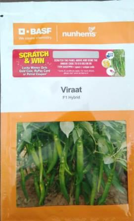 Virat - 1500 Seeds