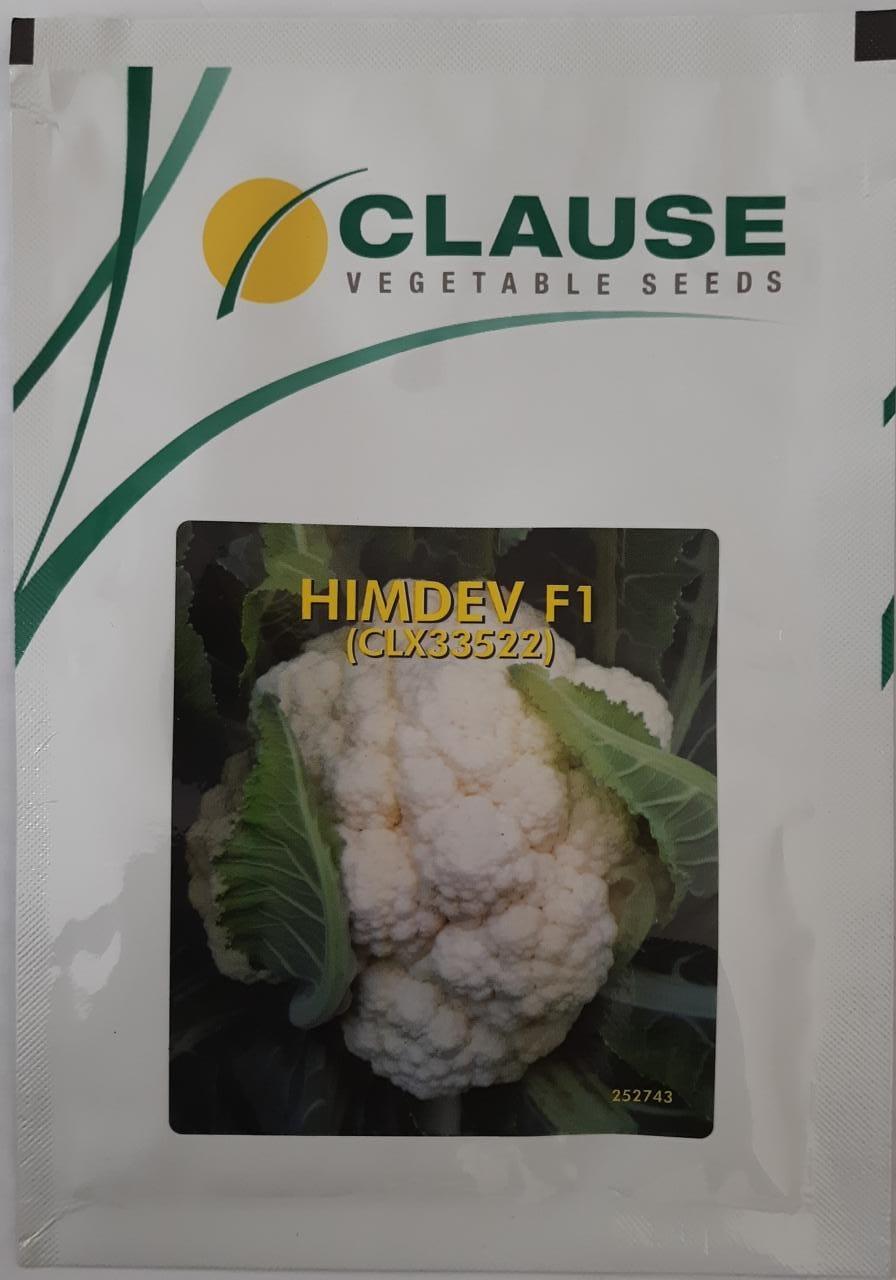 Cauliflower Himdev- 10gm