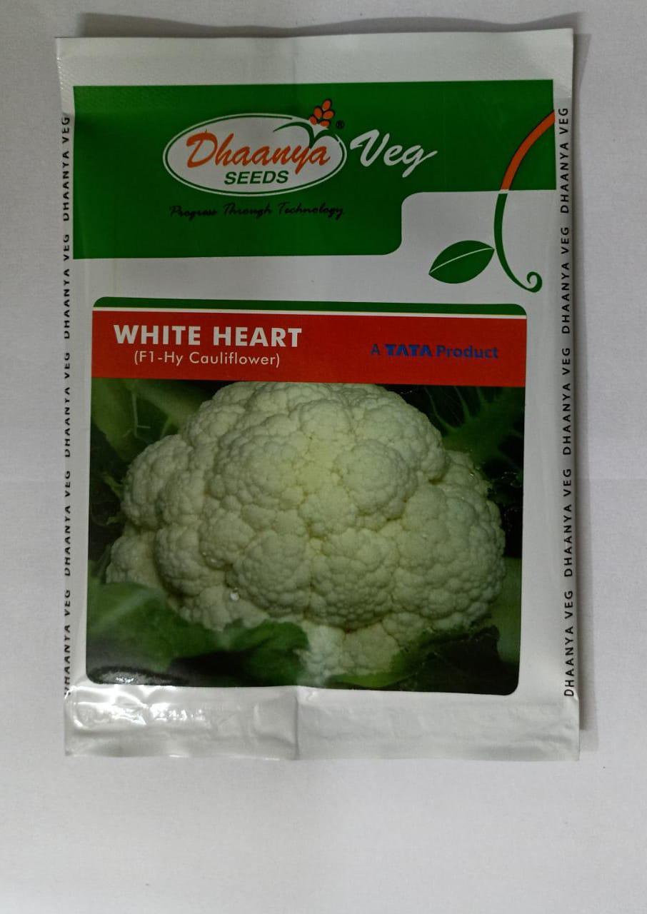 Cauliflower White Heart  -10gm