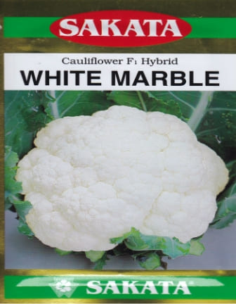 uploads/product/White_Marble.jpg