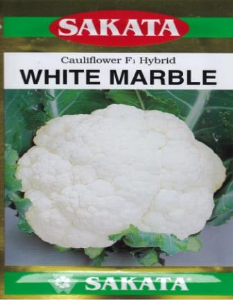 White Marble - 10gm