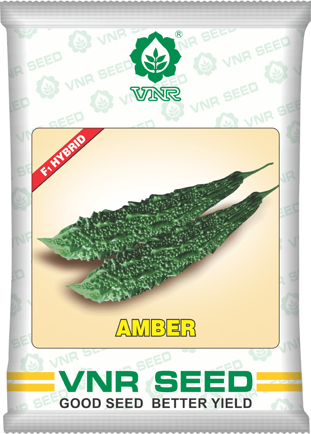 uploads/product/amber_bitter_gourd.png