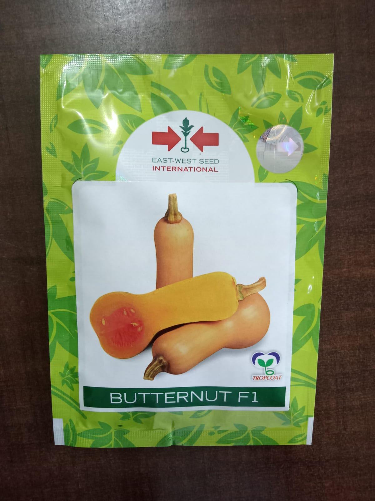 Butternut Pumpkin- 200 Sds