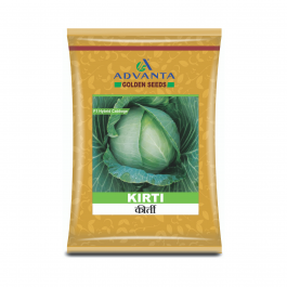 Advanta Cabbage Kirti  - 10 gm