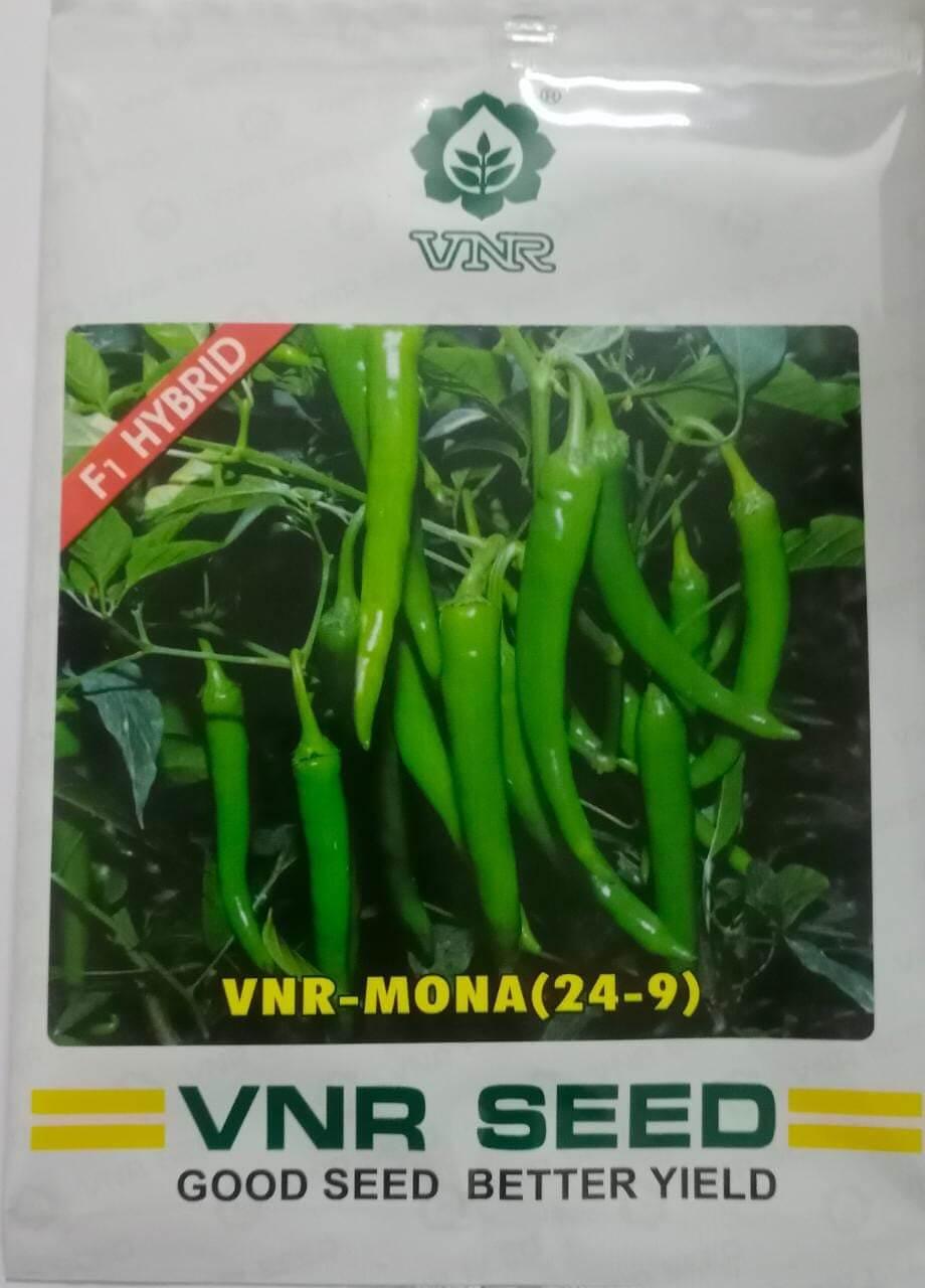 VNR Chilli Mona - 10 gm