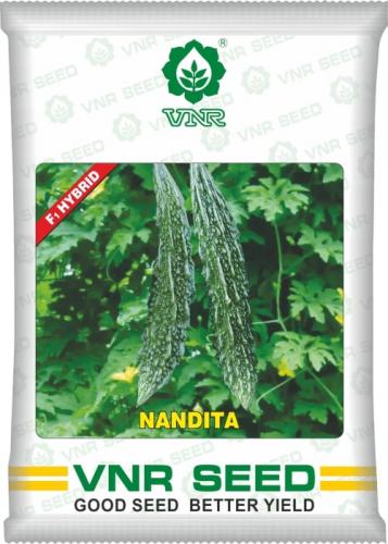 uploads/product/nandita_vnr.png