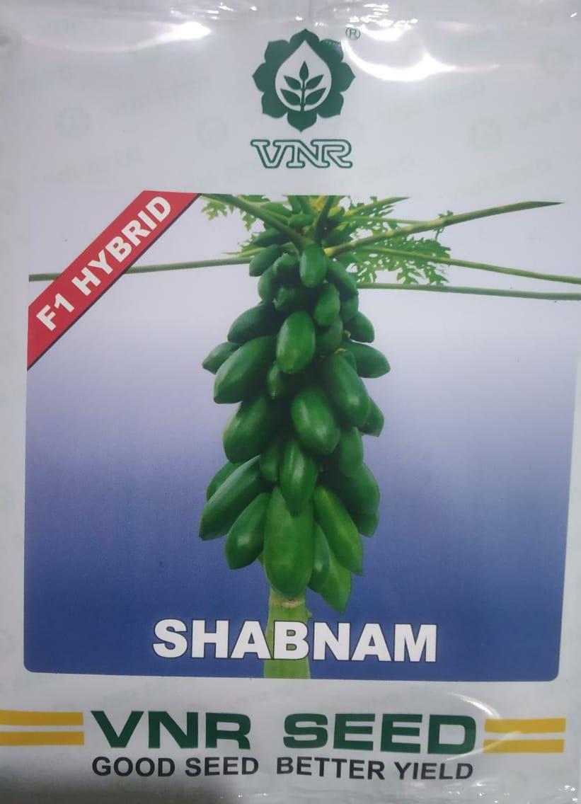 SHABNAM - 1gm