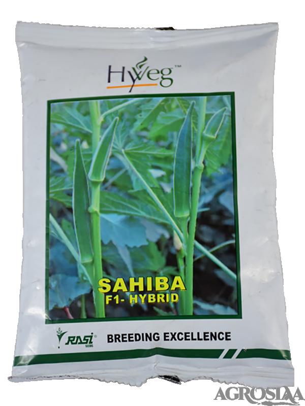 Sahiba Bhindi -250gm