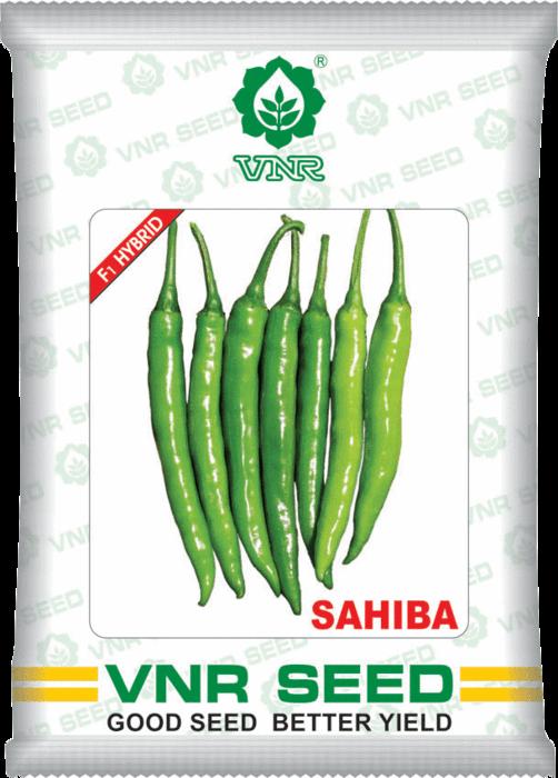 uploads/product/sahiba1.png