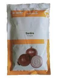 Nunhems Onion Santire -20000 SDS