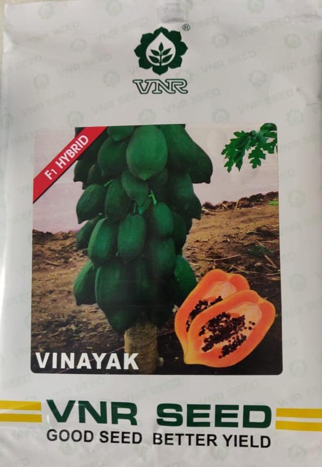 Vinayak - 1 gm